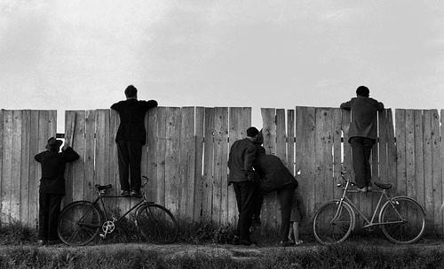lylablue_bikes